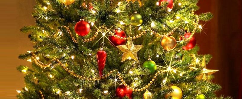 christmas_tree_home