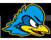 Delaware Blue Hens logo, virginia tech football roster cards